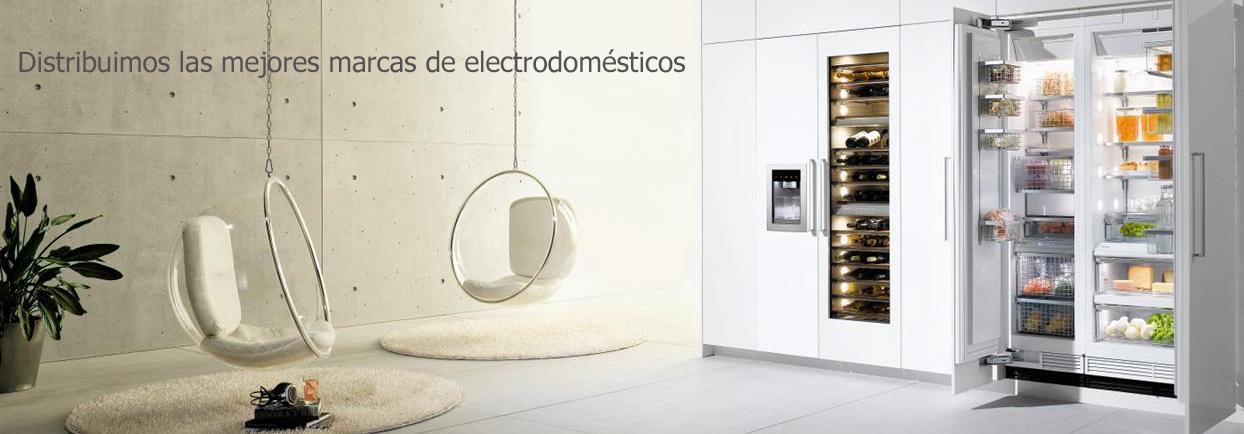 europa electronic distribuidor de electrodomésticos